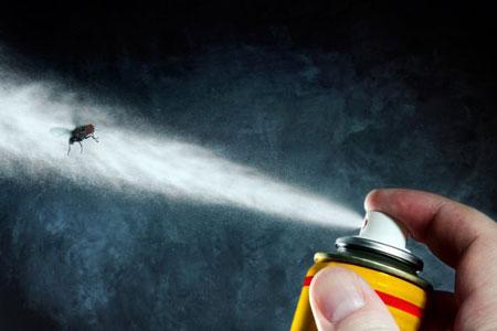 انواع حشره کش ها,انواع حشره کش , حشره کشهای شیمیایی ,انواع حشره کش ها کدامند؟,types insecticides,