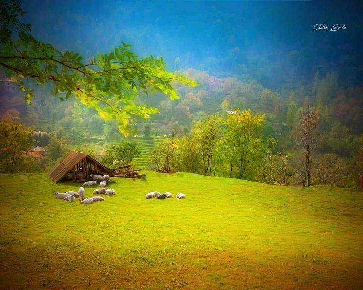 نمایی زیبا از ماسال گیلان را ببینید.